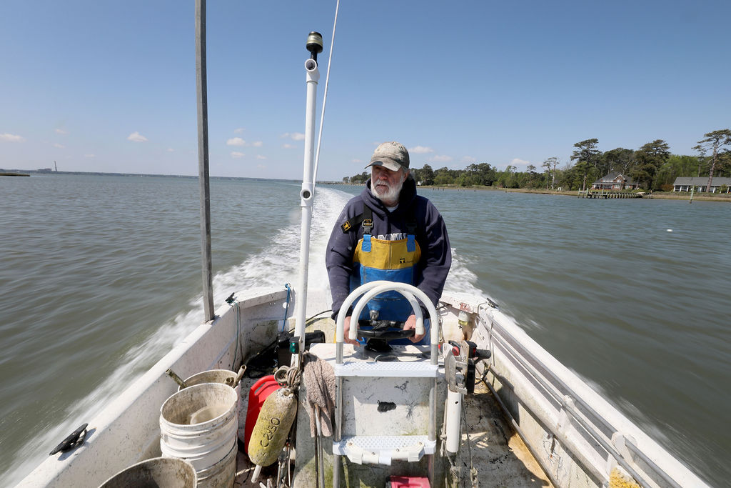 Tommy Leggett, owner of York River Oysters, heads down the York River from collecting oysters for a customer order Friday April 17, 2020.